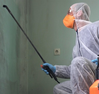 person in has-met suit spraying wall for mold remediation